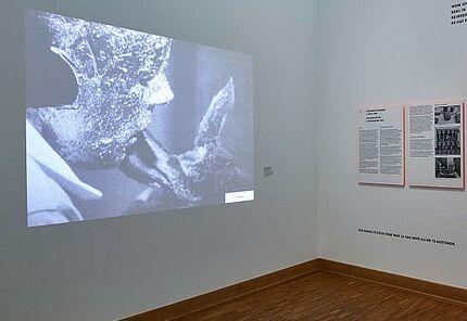 Kraftwerk Block Beuys, Ausstellungsansicht, Joseph Beuys, Wie man dem toten Hasen die Bilder erklärt, 1965, Foto: Wolfgang Fuhrmannek, HLMD