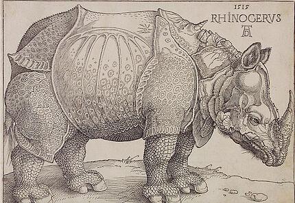 Albrecht Dürer, Rhincerus (DasRhinozeros), 1515, Holzschnitt, 212 : 200 mm ©Hessisches Landesmuseum Darmstadt, Foto: Wolfgang Fuhrmannek