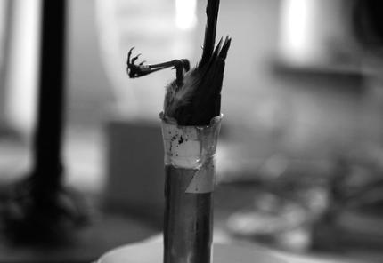 Sven Johne, A Sense of Warmth, 2015, HD-Video, EmU, 15 Minuten 35 Sekunden Courtesy of the artist and Galerie Klemm's © Sven Johne, VG Bild-Kunst, Bonn, 2019