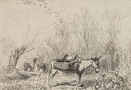 Charles-François Daubigny, L'Ane au Pré (der Esel auf der Weide), 1862, Cliché-verre, 169 x 204 mm