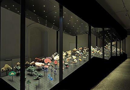 Blick in die Mineraliensammlung