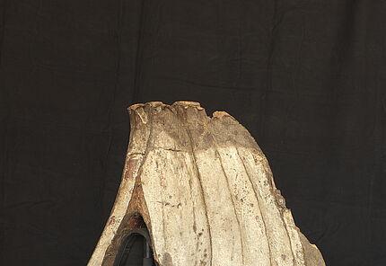 Turniersattel, Deutschland, 2. Hälfte 15. Jahrhundert, Holz, Leder, Leinwand, Reste von Bemalung, H. 115 cm, B. 110 cm, T. 60 cm