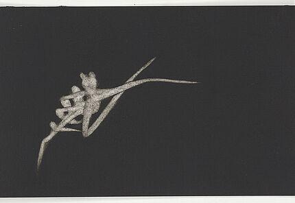 Anke Röhrscheid, Ohne Titel, 2007, Schwarze Tusche, weiße Gouache auf Aquarellpapier © Hessisches Landesmuseum Darmstadt, Sammlung MeyVArt